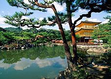 Садово-парковый ансамбль японский сад Киото